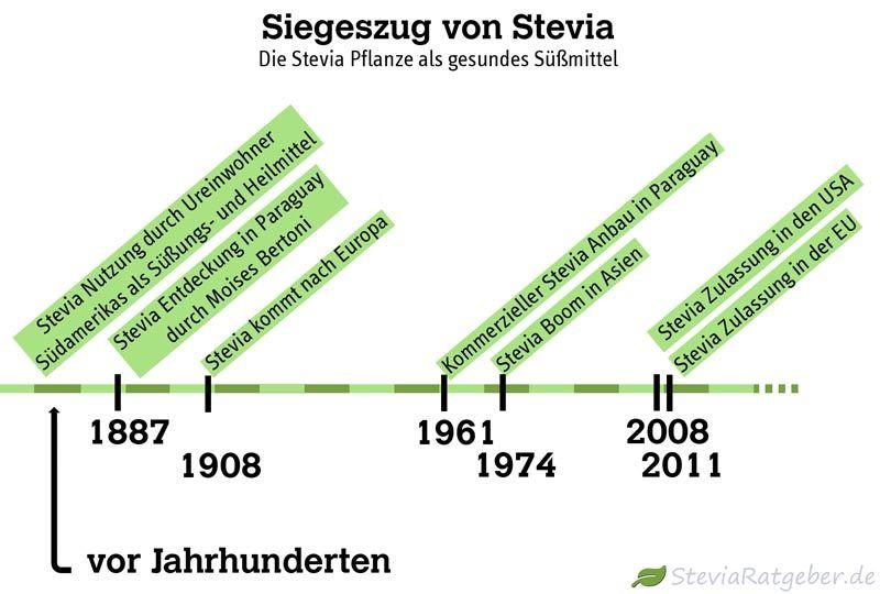 Moderne Geschichte von Stevia
