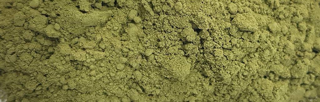 Stevia Rebaudiana Süßkraut Pulver